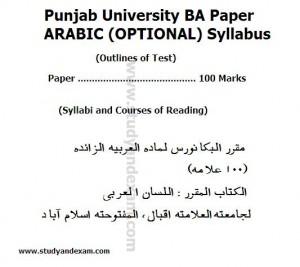 arabic syllabus BA OPTIONAL